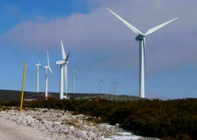 Wind repairs
