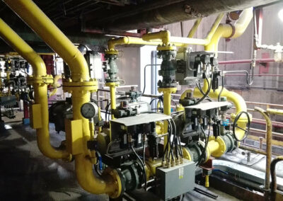 Energía Skid gas natural